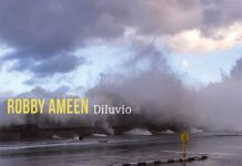 Robby Ameen: Diluvio