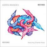Adrien Brandeis - Meetings